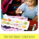 Fun Toddler Lunch Idea!