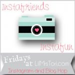 Instagram Blog Hop Co-Host!