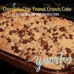 Chocolate Chip Peanut Crunch Cake