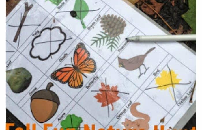 Fall Fun Nature Hunt (Printable)