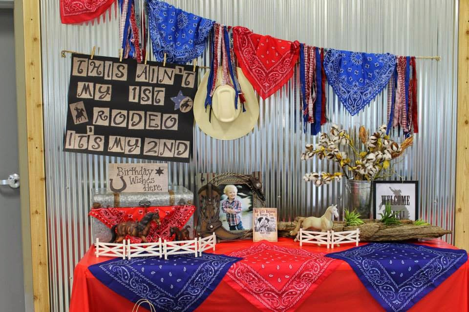 Wild West Birthday Party Decorations