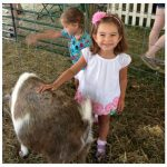 5 Activities for Kids That Love Animals