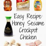 An Easy Crockpot Recipe the Whole Family Will Love: Honey Sesame Drumsticks