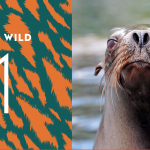 Where to Wednesday: Exciting Summer at the Zoo #NYisWild