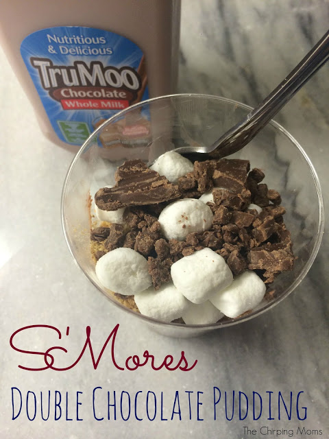 S'mores Double Chocolate Pudding Recipe || The Chirping Moms