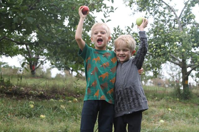 Apple Picking Fun (With Favorite Fall Recipe)
