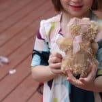 Fun Ideas for a Disney Junior Themed Playdate