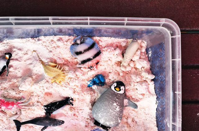 Summer Activity for Kids: Beach in A Box