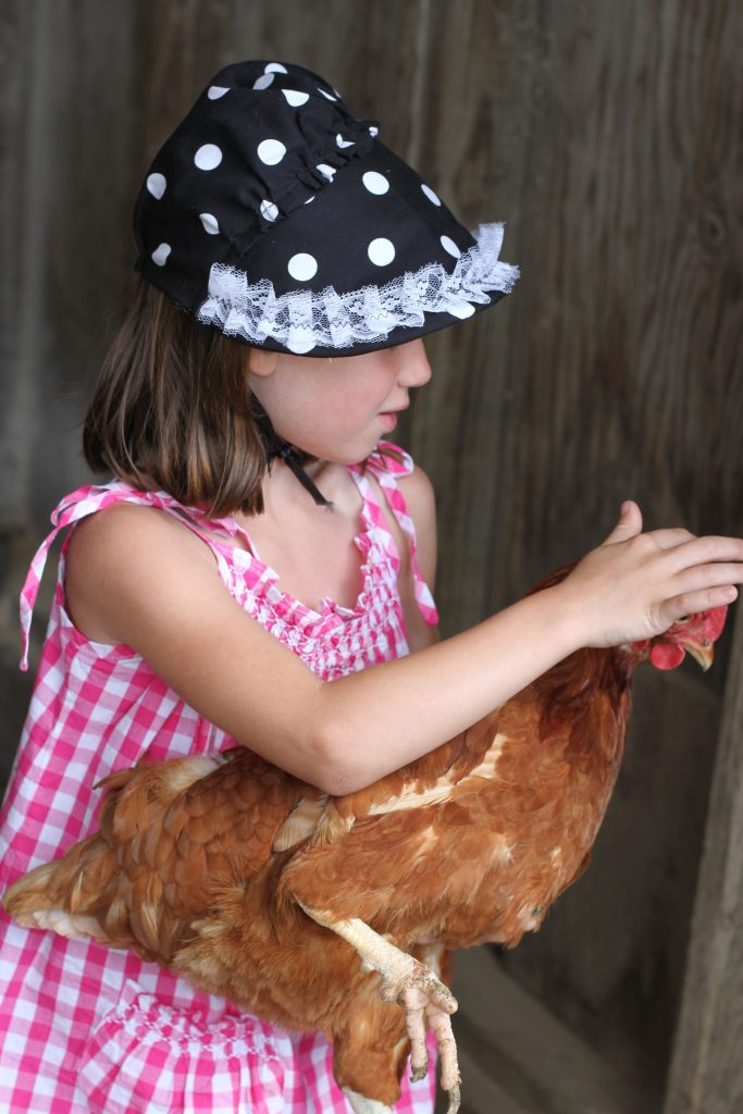 Petting Chicken, Amish Country