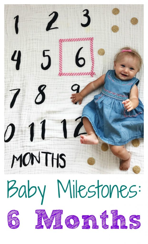 Six Month Old Milestones & Favorites || The Chirping Moms