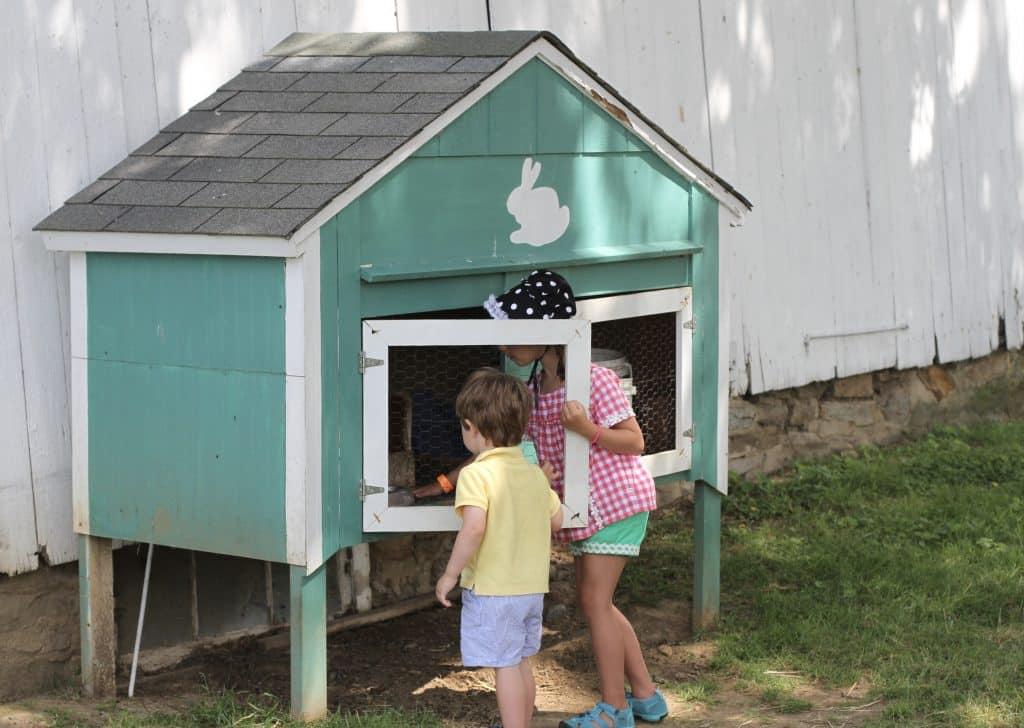 Kids visiting bunnies Verdant View Farm