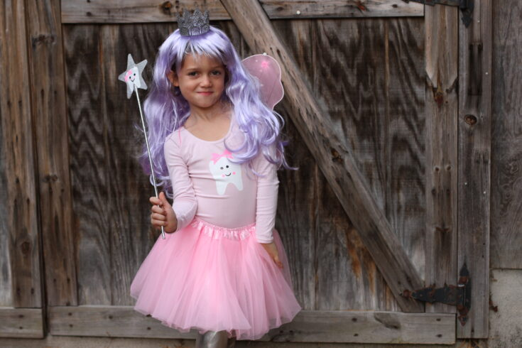 DIY Costume: The Tooth Fairy