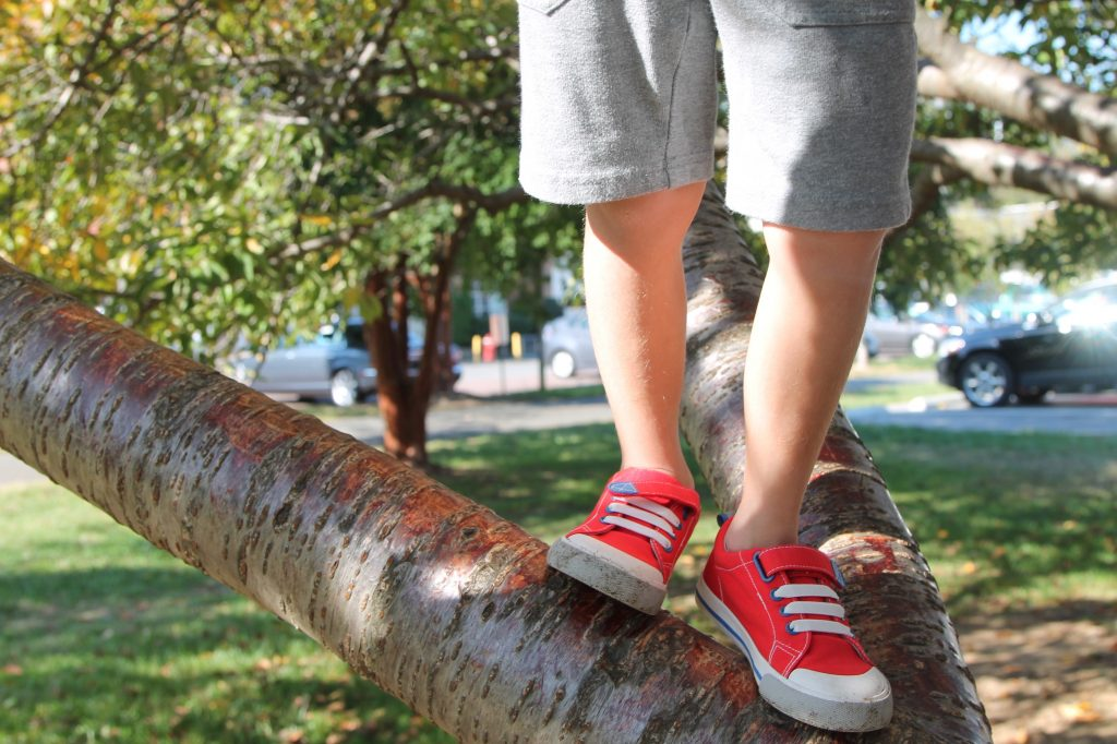boys shoes for fall