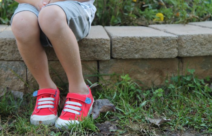 20 Nature Books for Kids (& Favorite Fall Shoes for Kids)