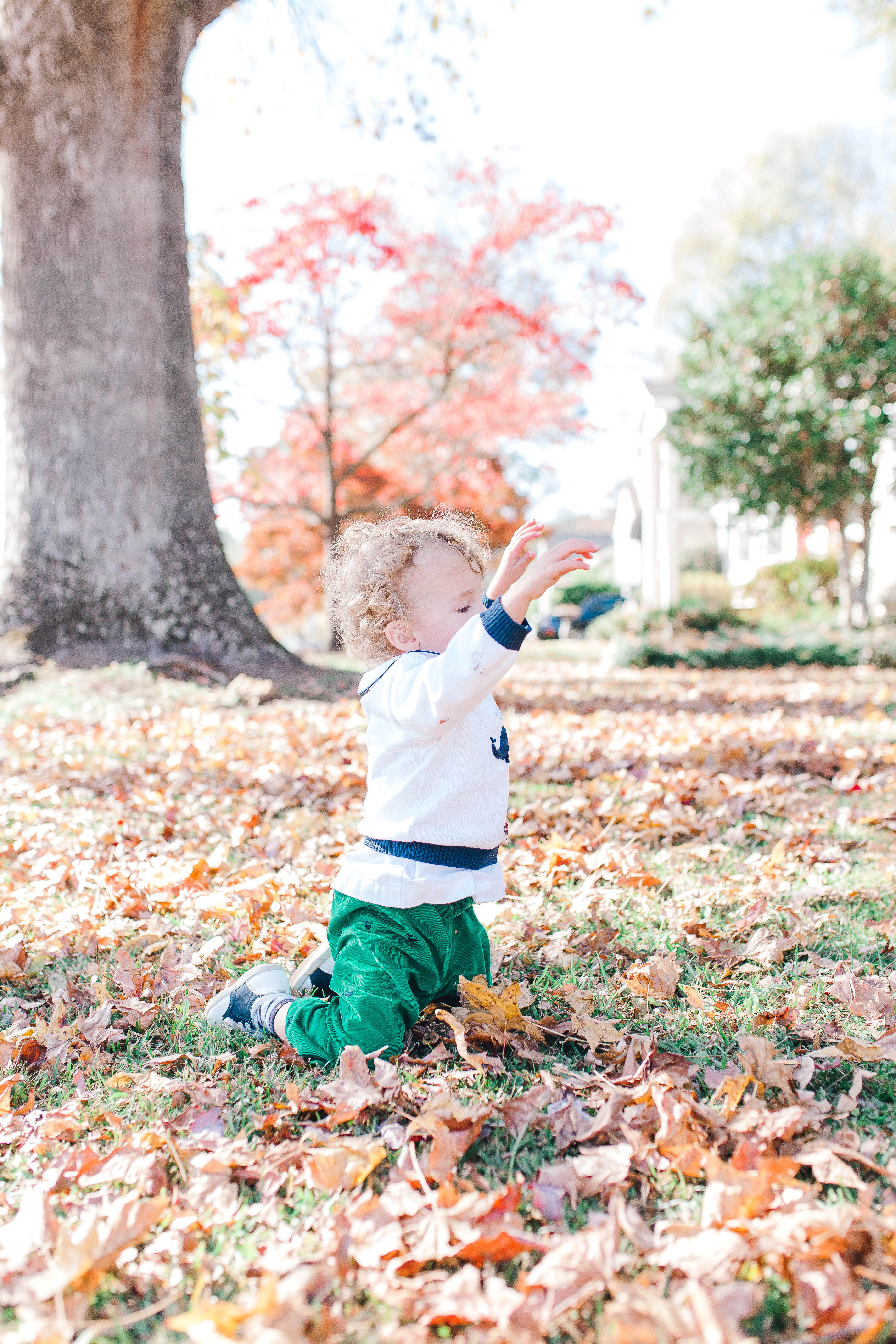 4c19b00319 Adorable Fall Outfits for Applie Picking - The Chirping Moms