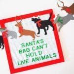 Gift Guide: Gifts for Kids that Love Animals