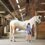 Watchung Stables: A Review By Kids