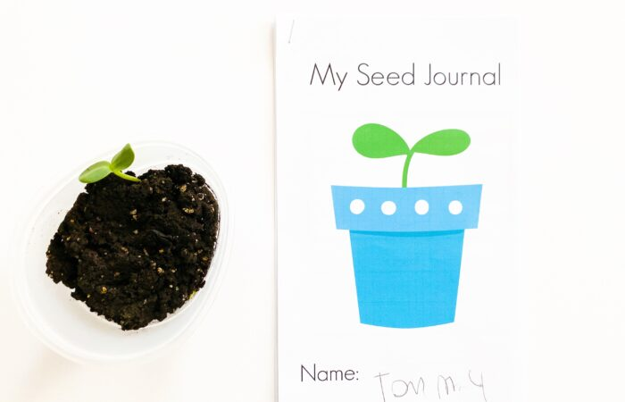 Free Printable Seed Journal for Kids