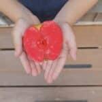 Simple Preschool Activities: Apple Week