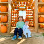 Halloween Fun with the Bella Bliss Fall Bliss List